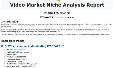 nichexploit report